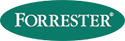 Forrester Content Marketing for Marketing & Strategy Professionals